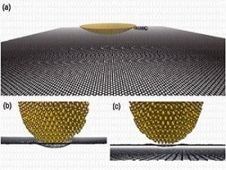 Atomistic Simulation of Gold-Graphene Interface