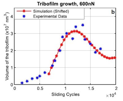 Tribofilm Growth - AFM Data