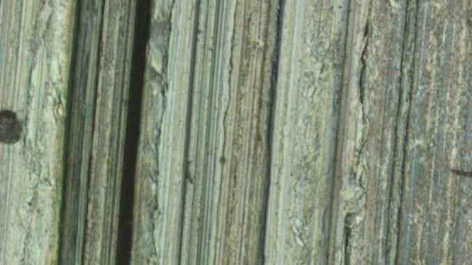 Worn Steel Disk