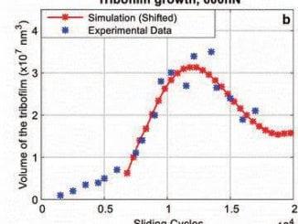 Tribofilm Growth