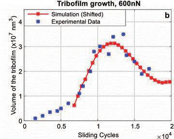 Tribofilm Growth