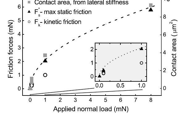 Contact Area vs. Load