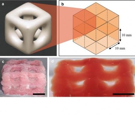 Cryogenic 3D printing