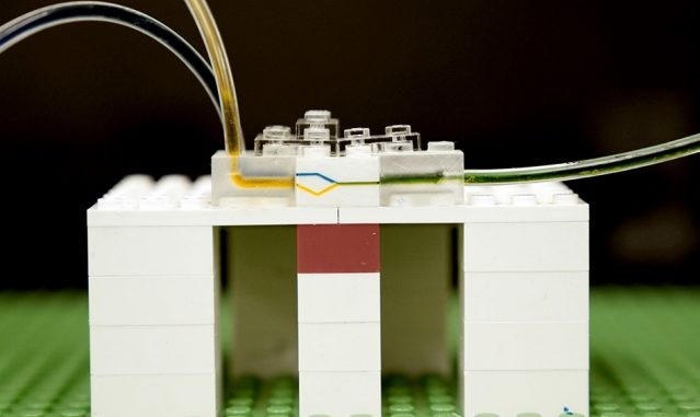 MIT researchers have developed a new platform for microfluidics, using LEGO bricks. Shown here, fluid flows through tiny channels milled into the side walls of LEGO bricks.