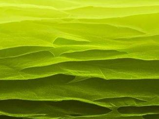 SEM image of carbon